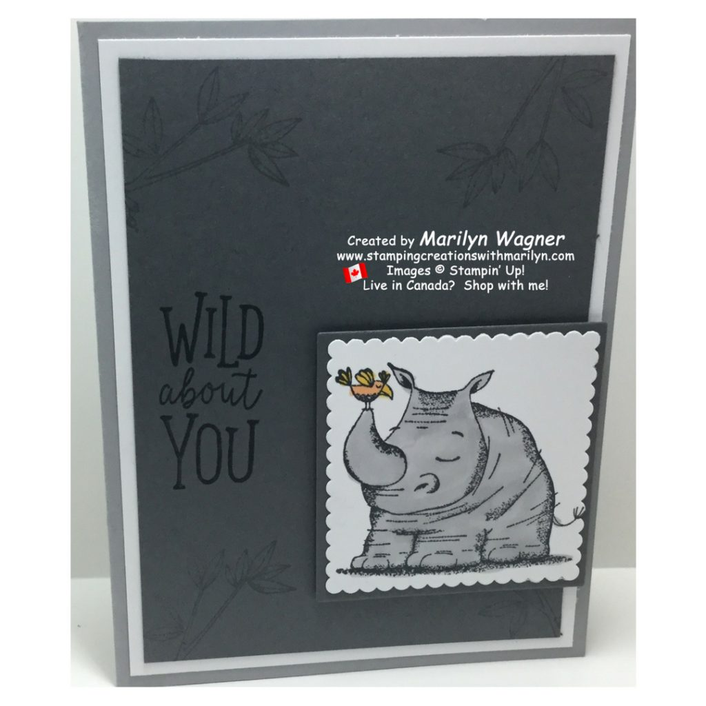 Animals Give A Special Meaning To Greeting Cards Stamping