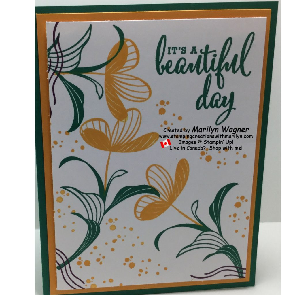 Peaceful Reflections make Peaceful Cards